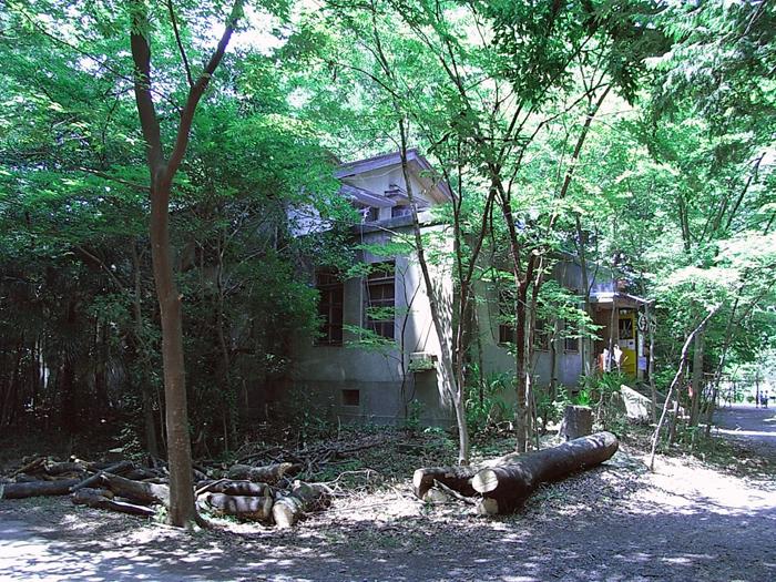 仲田の森 桑ハウス2007 夏