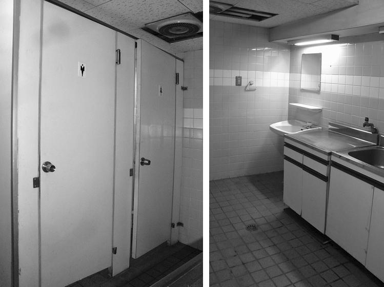 リニューアル前のトイレと流し 一室に同居していた