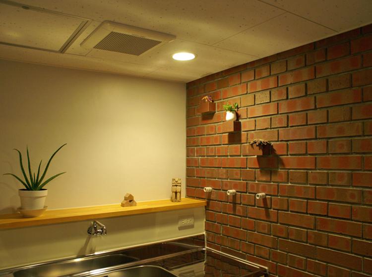 流しとレンガの間仕切り壁   向かって右に女子トイレ、流しを挟んで左側に男子トイレを配置