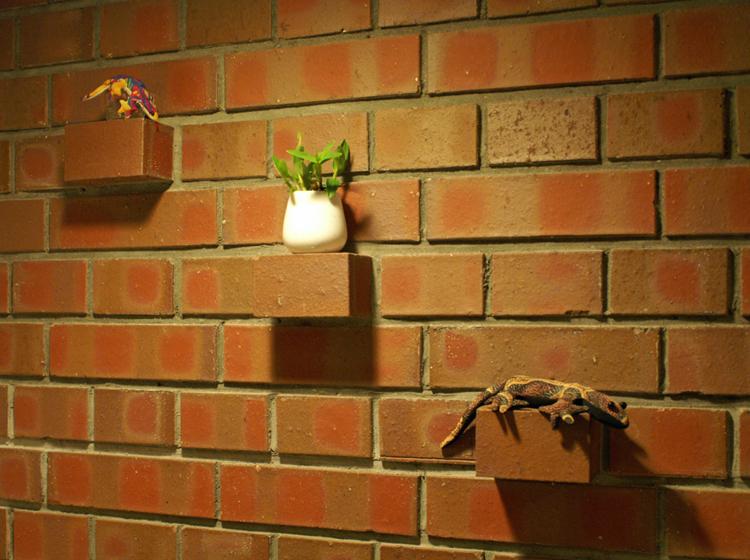 イギリス積みパターンの間仕切り壁とレンガをずらしてつくった小物置き