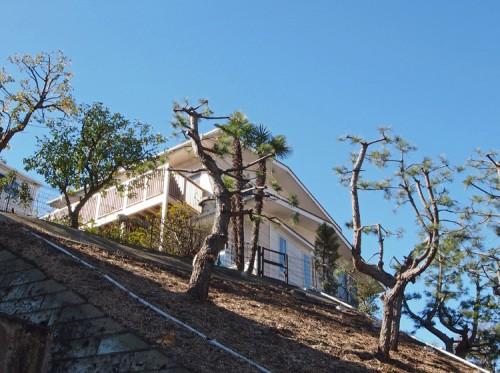 丘陵に建つ洋風住宅